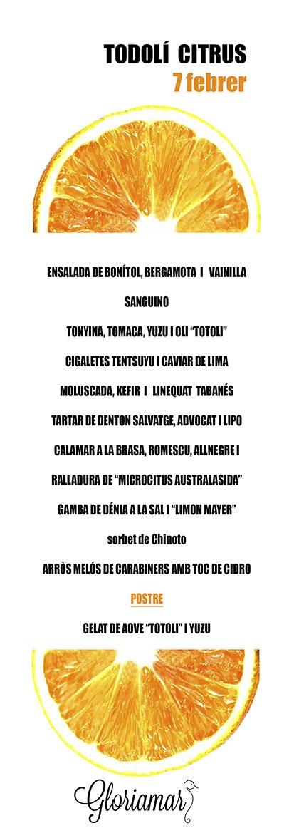 TODOLI CITRICS indv